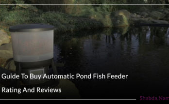 Guide To Buy Automatic Pond Fish Feeder